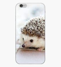 Cute Baby Hedgehog Photograph iPhone Case