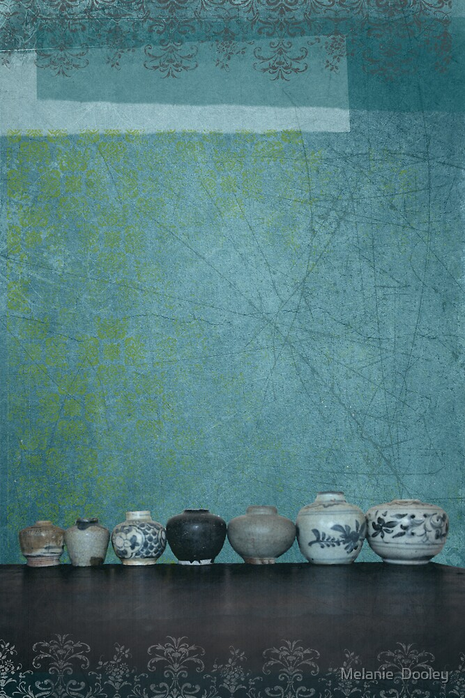Pot Collection by Melanie  Dooley