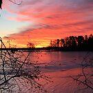 Lake Tomahawk - Minocqua, Wisconsin by Lynne Prestebak