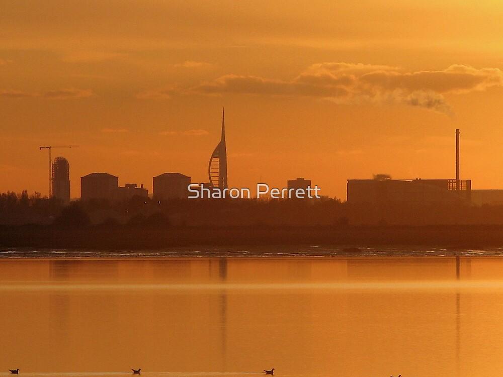 Spinnaker at Sunset 12-11-07 by Sharon Perrett