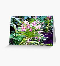 Orchid Jungle Greeting Card