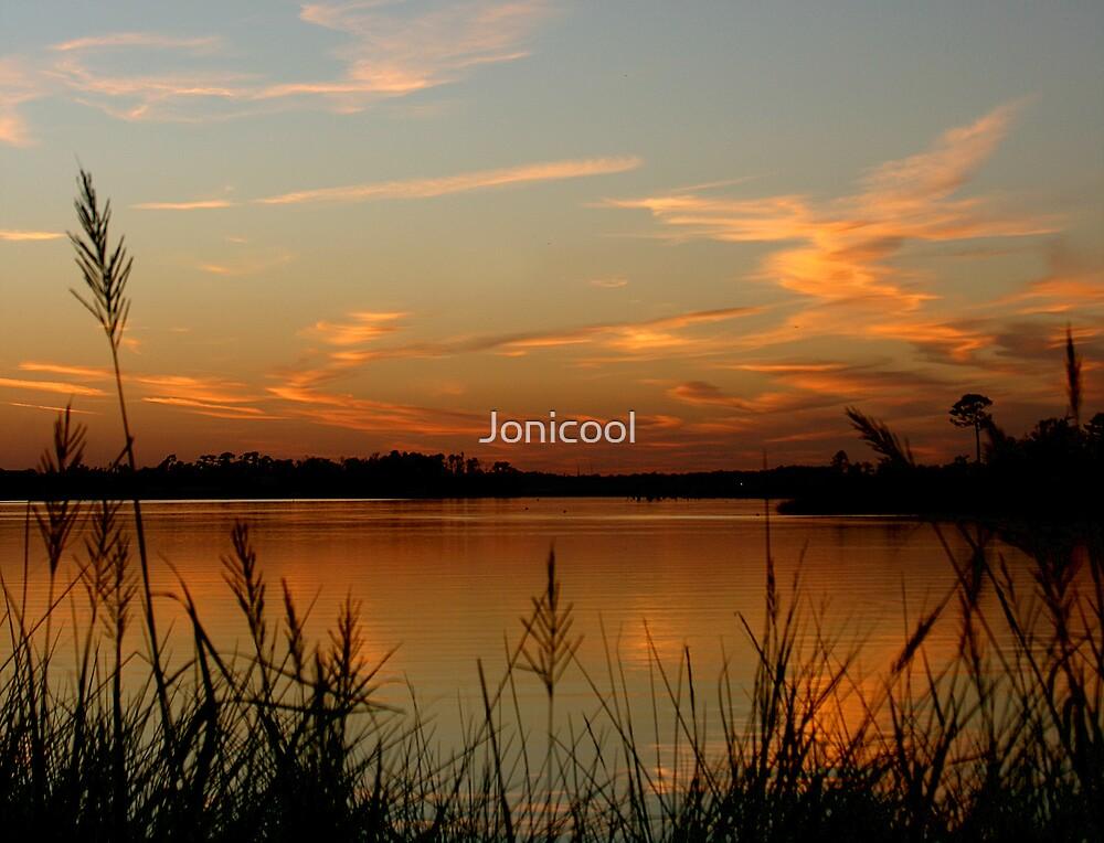 Bayou Colors by Jonicool