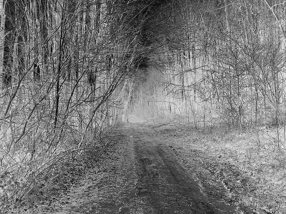 Nightmare Woods by Michael Reimann