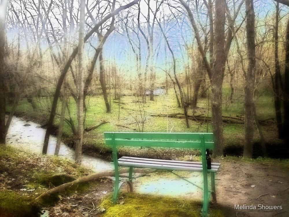 Paradise 2 by Melinda Showers