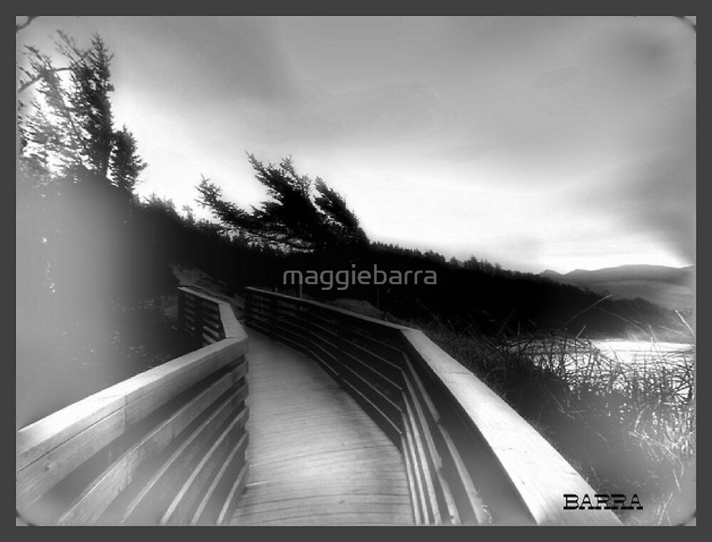 The Path  by maggiebarra