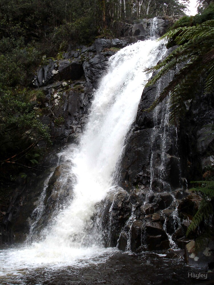 Falls at Marysville by Hayley