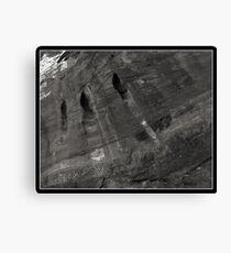Holes Canvas Print