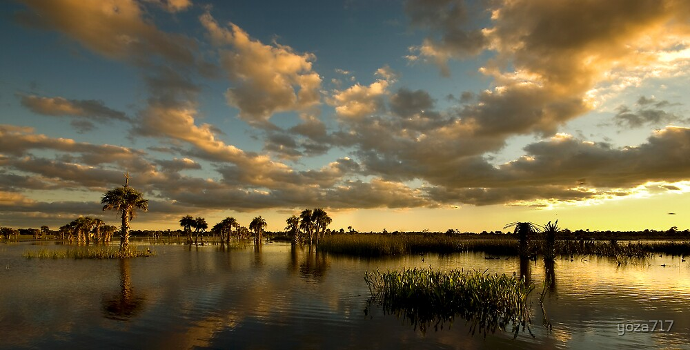 Florida Sunset by yoza717