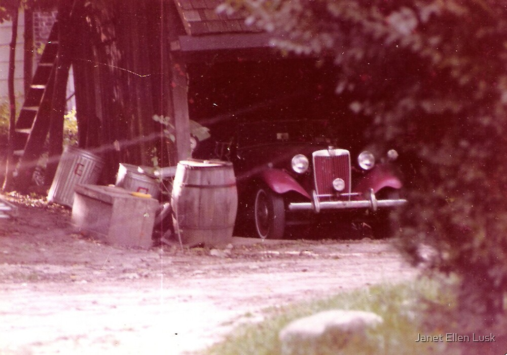 The Old Red Car by Janet Ellen Lusk