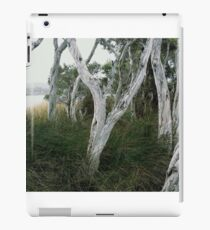 Paper Bark iPad Case/Skin
