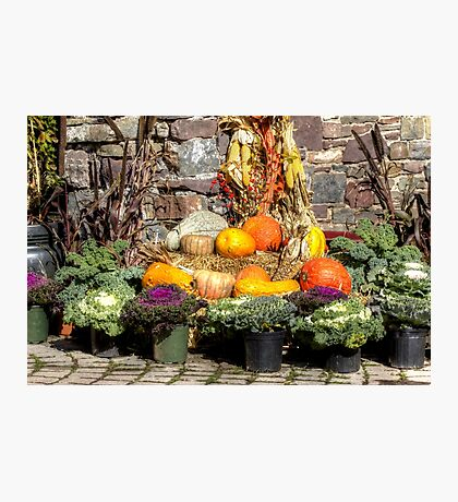 From The Good Earth - A Fruitful Harvest Photographic Print