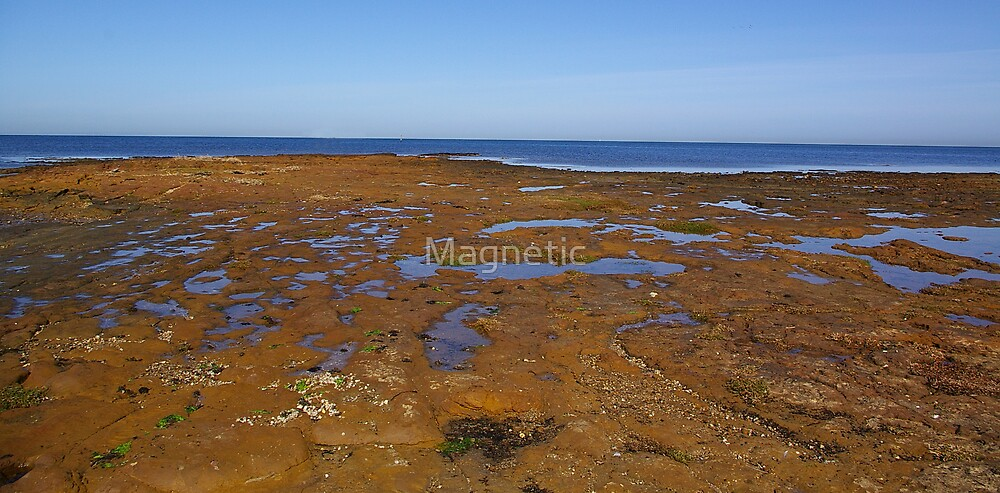 Rocky Foreshore by Magnetic