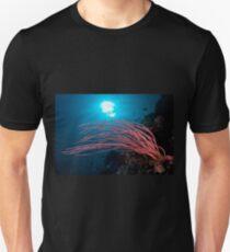 Coral, Wakatobi National Park, Indonesia T-Shirt