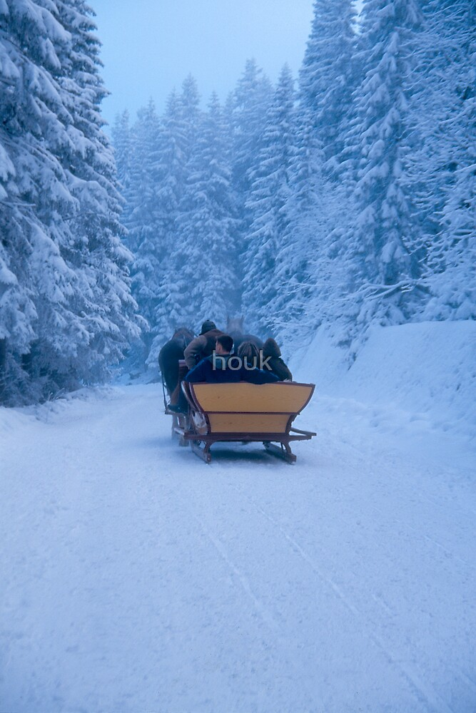 Winter ride by houk