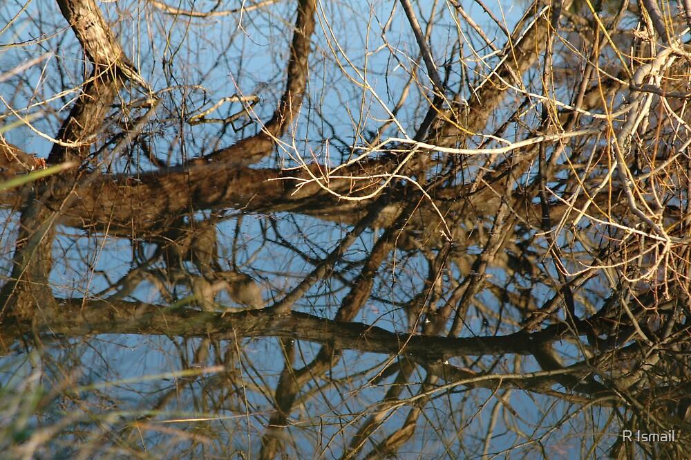 Reflection I by Rini Ismail