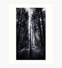 In the Woods V Art Print