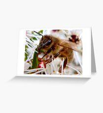 Bee II Greeting Card