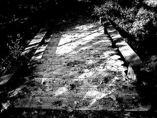Black and white bridge. by lunarstorm12