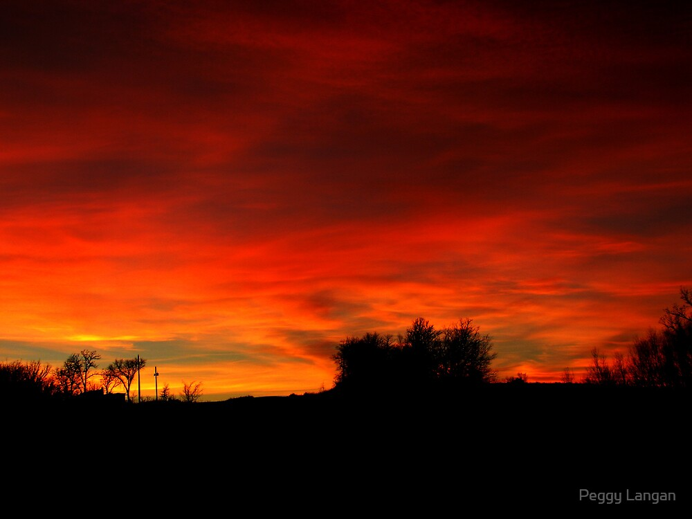 Fire In the Sky by Peggy Langan