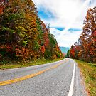 Winding Mountain Roads - North Georgia Landscape by Mark Tisdale