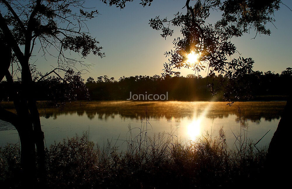 Morning Bayou Reflections by Jonicool