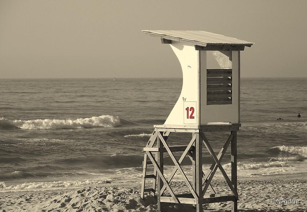 Lifeguard on Duty? by TNRidrnr