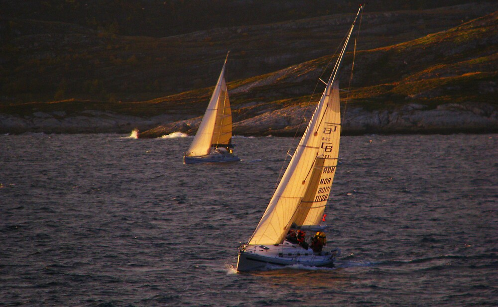 Sailers by Loklok