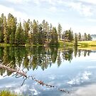 Trout Lake Reflection by Caleb Ward
