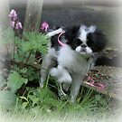 Puppy In The Garden by minnielee