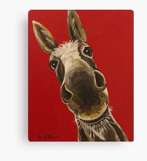 Donkey Art 'Snickers' Canvas Print