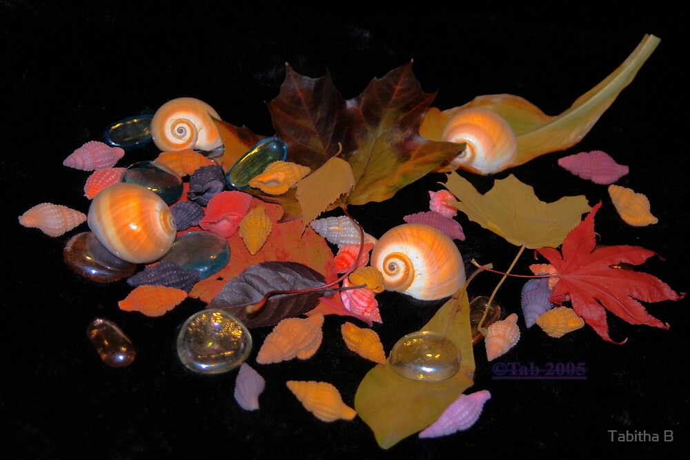 Autumn's Gifts by Tabitha B