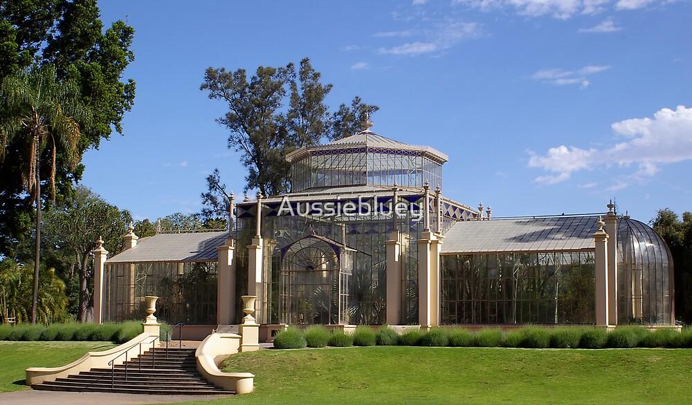 Old Glasshouse by Aussiebluey