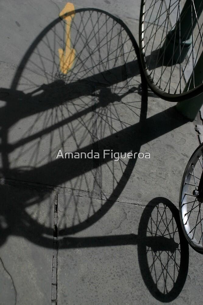 Shadow by Amanda Figueroa