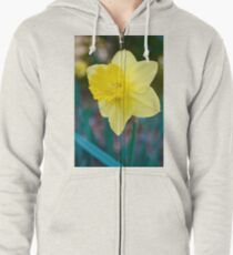 Daffodil Simple Bliss Zipped Hoodie