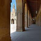Ibn Tulun Mosque Cairo by Nigel Fletcher-Jones