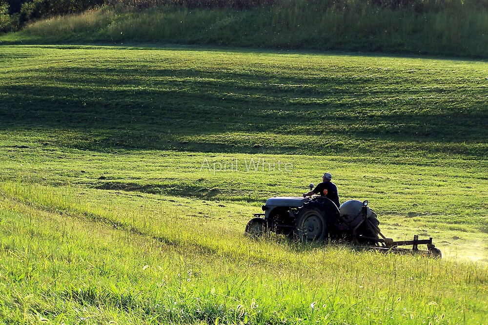 Sunset Mowing by April White