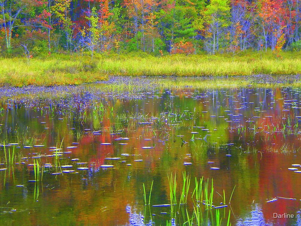 Painted Pond by Darline