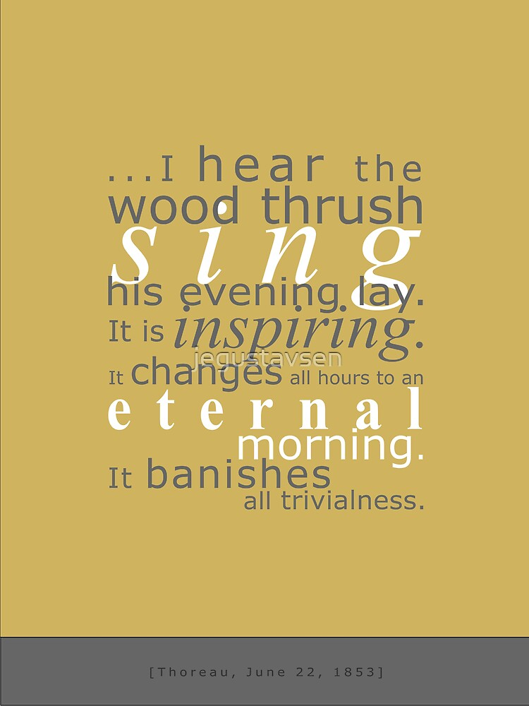 Wood Thrush by jegustavsen