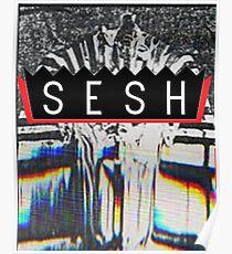 Bones SESH Poster