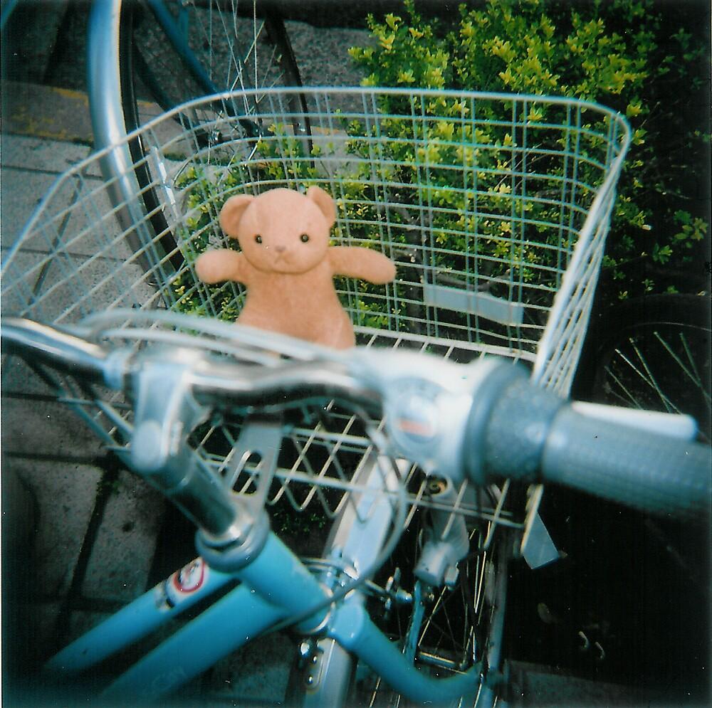 Lost Teddy by fab2can