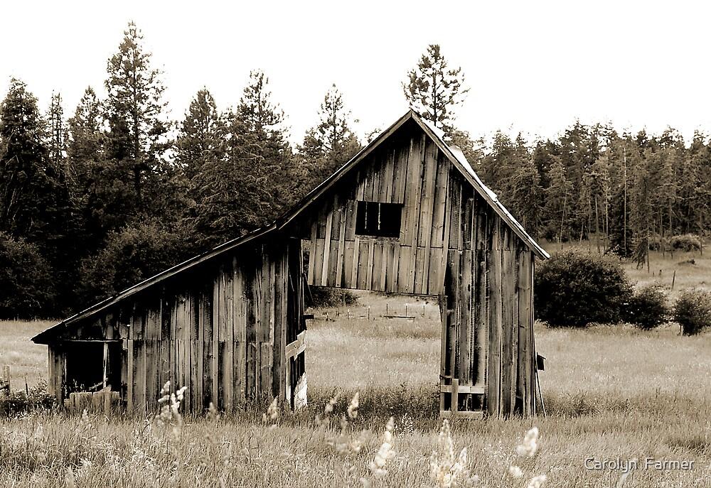 Wild West Barn by Carolyn  Farmer