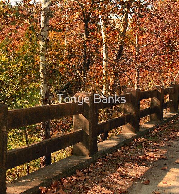 Bridge to Autumn by Tonye Banks