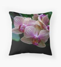 Pink & Cream Orchid Throw Pillow
