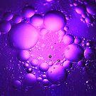Circles of Purple by coopphoto