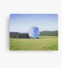 When nature makes a cube Canvas Print