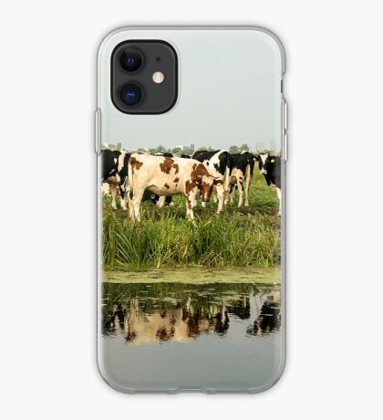Cows and their reflective image iPhone Case