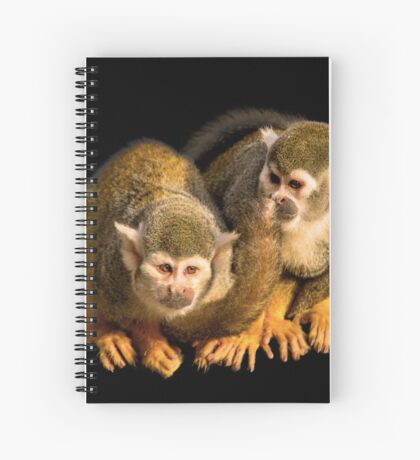 Two squirrel monkeys agains black background Spiral Notebook
