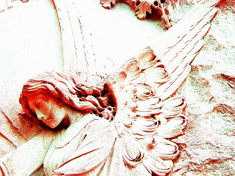 rd angel 1 by mrmc714
