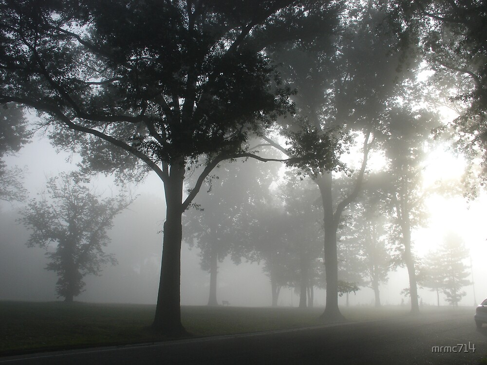 hgld park fog by mrmc714