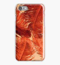 Feather Four iPhone Case/Skin